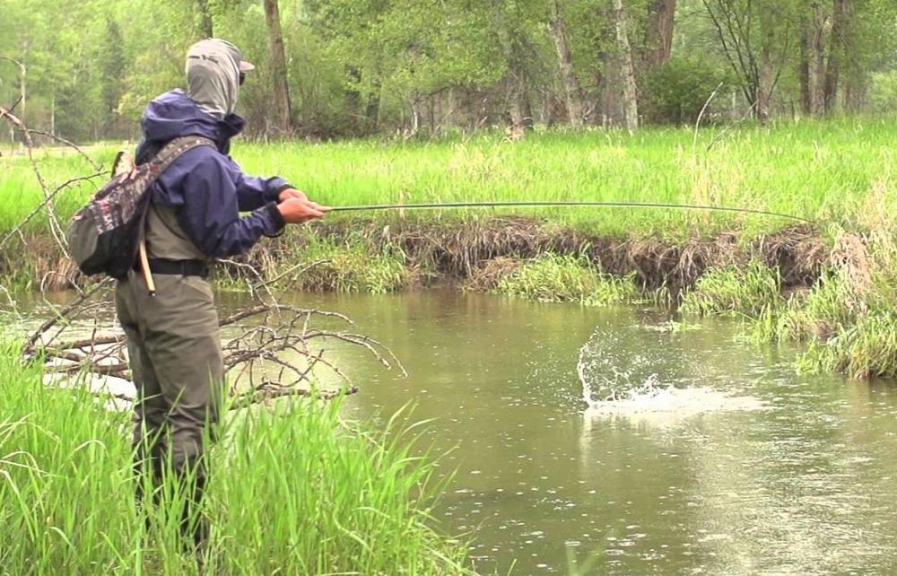 La pesca con streamer en rio